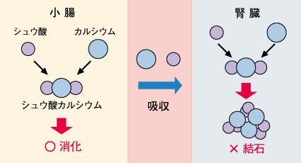 yasai04